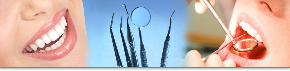 Extract Dentists in Canada from Dentistdirectorycanada.ca